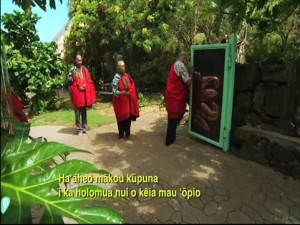 ʻĀhaʻi ʻŌlelo Ola – July 11, 2010