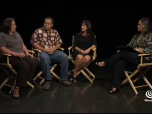 Hawaiʻi Charter School Panel