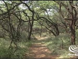 Nā Hulu Kupuna – Katherine Maunakea