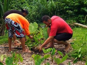 Hālau Kū Māna – Celebrating 10 Years of Hawaiian Charter School Excellence