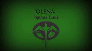 ʻŌlena – Pueo Pata