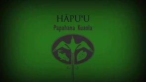 Hāpuʻu – Rick Barboza
