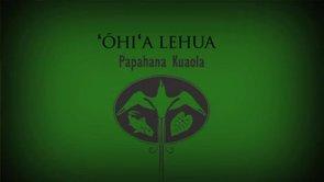 ʻŌhiʻa Lehua – Sam ʻOhu Gon