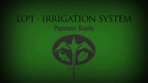 Loʻi: Irrigation – Kīhei Nahale-a