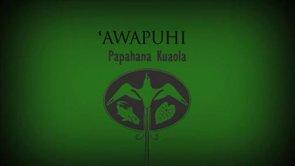 ʻAwapuhi – Kapalikū Schirman