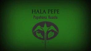 Hala Pepe – Sam ʻOhu Gon