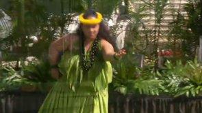 Hālau O Ke ʻAʻaliʻi Kū Makani