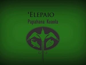 ʻElepaio – Kaipoʻi Kelling