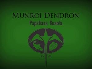 Munroi Dendron – Kuʻu