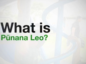 What is Pūnana Leo?