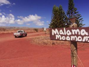 Nā Loea: The Masters | Mac Poepoe: Mālama Moʻomomi
