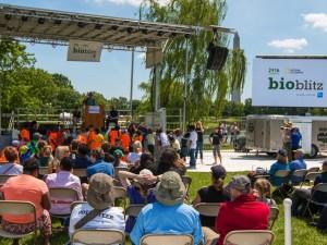 BioBlitz 2016