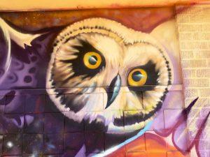 Mele Murals – Aliamanu Middle School