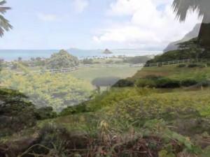 Wahi Koʻikoʻi: Kualoa