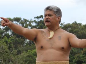 ʻAha Kāne 2012 Introduction
