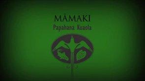 Māmaki – Hiʻilei Kawelo