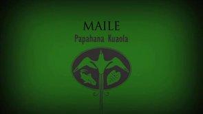 Maile – Pueo Pata