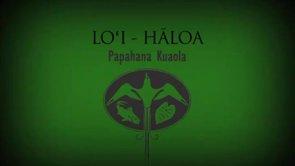 Loʻi: Hāloa – Kīhei Nahale-a