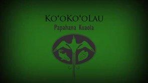 Koʻokoʻolau – Kīhei Nahale-a