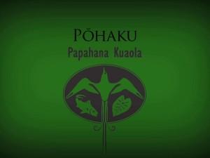 Pōhaku – Billy Fields
