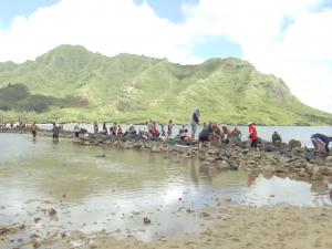 Kahana Aloha ʻĀina